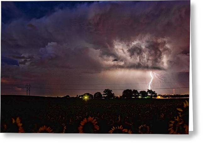 Lightning Stormy Weather Of Sunflowers Greeting Card by James BO  Insogna