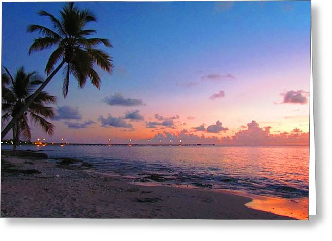 Lights At Sunset Greeting Card by Robin Becker