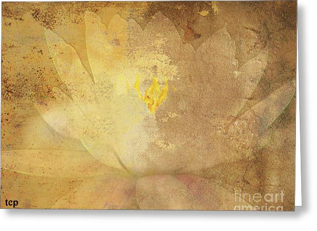 Greeting Card featuring the photograph Lights On Lily by Traci Cottingham