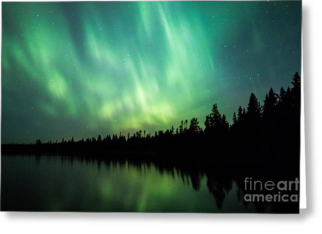 Lights Over Moose Lake Greeting Card