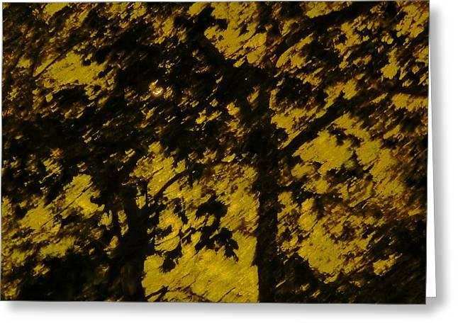 Lighttthru Forest Greeting Card by Florene Welebny