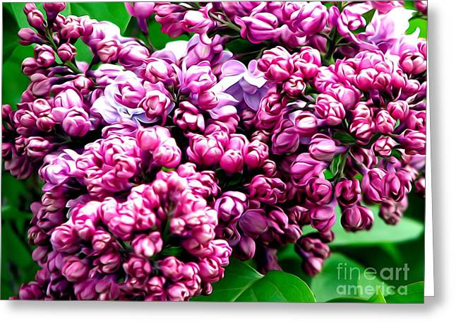 Lilac Blossoms Abstract Soft Effect 1 Greeting Card