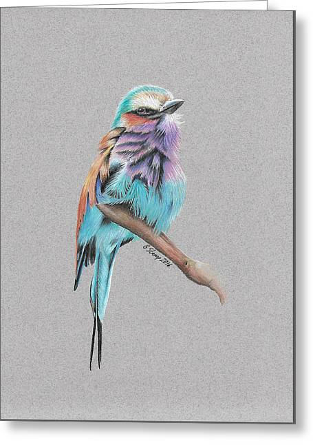 Greeting Card featuring the drawing Lilac Breasted Roller by Gary Stamp