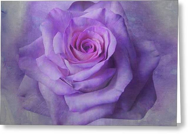 Lilac Purple Rose Greeting Card