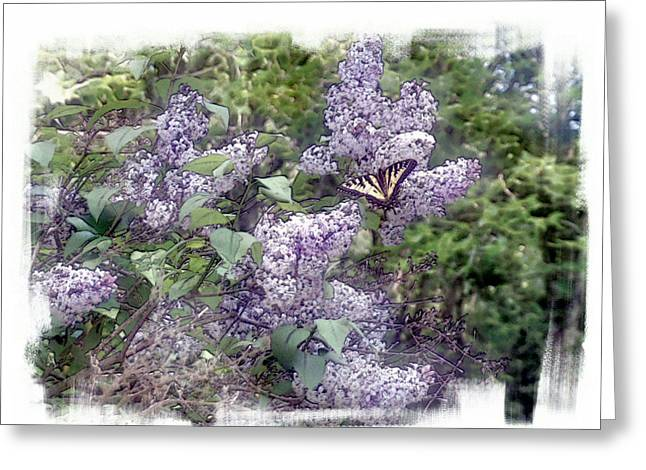 Lilacs  Fly Away Greeting Card