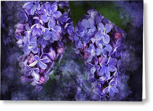 Lilacs Frenchy Scruff Greeting Card