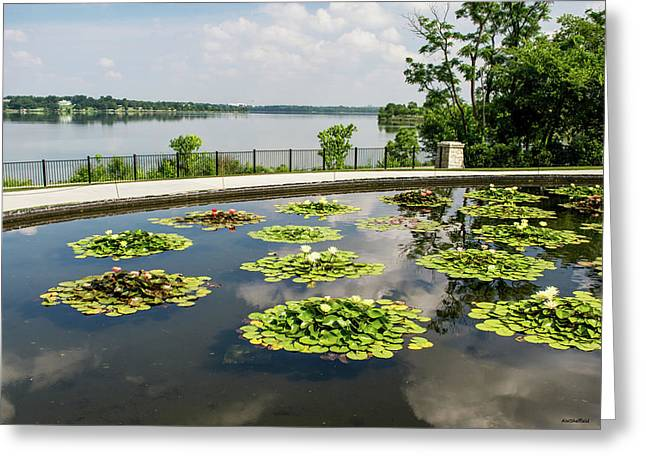 Lilies And The Lake Greeting Card