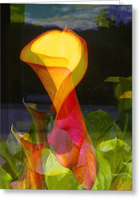 Lilies Greeting Card by Eileen Shahbazian