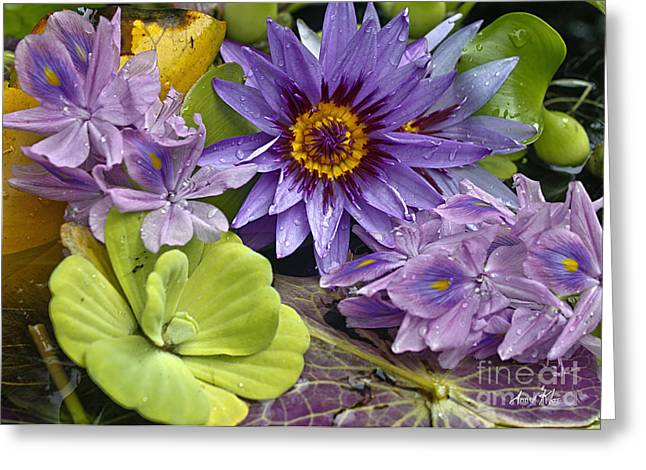 Greeting Card featuring the photograph Lilies No. 38 by Anne Klar