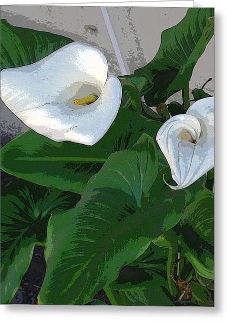 Lilies Of The Field Greeting Card by Sally Stevens