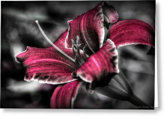 Greeting Card featuring the photograph Lilly 3 by Michaela Preston