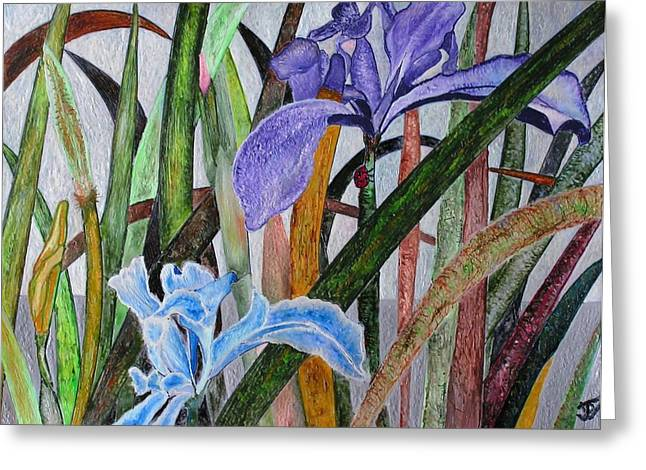 Lilly Greeting Card by John Vandebrooke