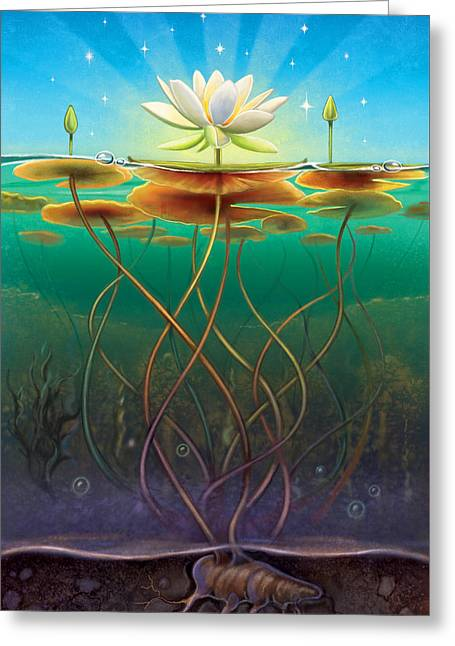 Water Lily - Transmute Greeting Card