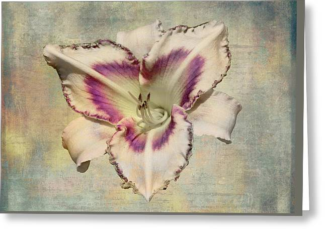 Lily For A Day Greeting Card by Angela A Stanton