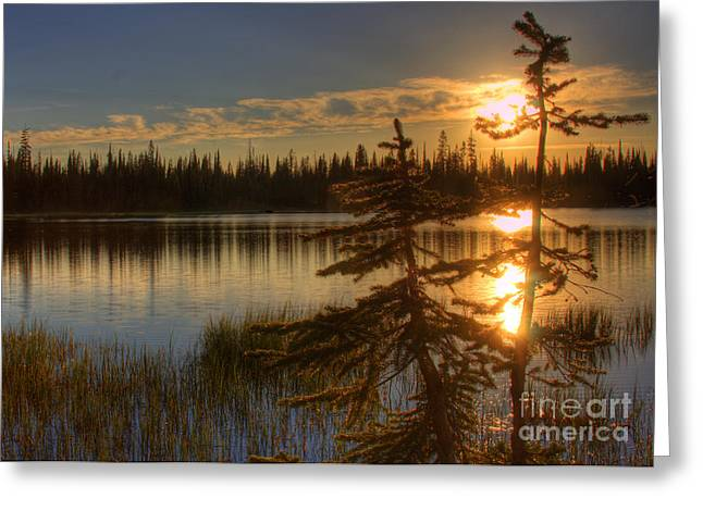 Lily Lake Sunset  1 Greeting Card