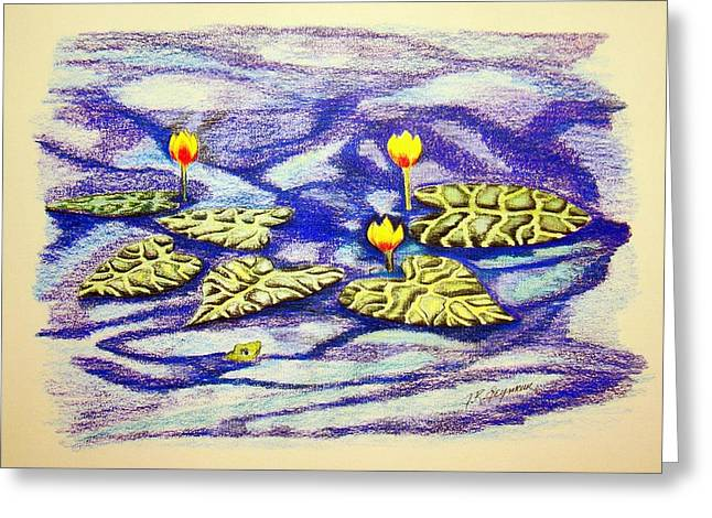 Lily Pad Pond Greeting Card by J R Seymour