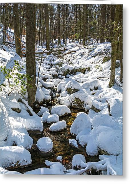Lily Pads Of Snow Greeting Card by Angelo Marcialis
