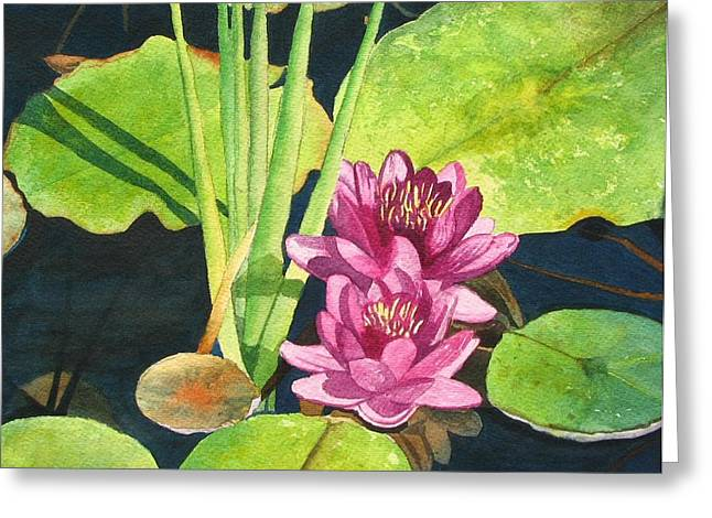 Lily Pads Greeting Card by Sharon Farber