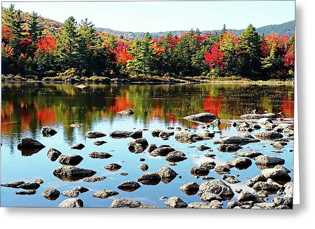 Greeting Card featuring the photograph Lily Pond - Kancamagus Highway - New Hampshire by Joseph Hendrix