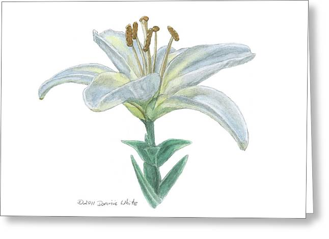 Lily Watercolor Greeting Card