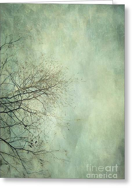 Limbs Of A Tree 3 Greeting Card by Priska Wettstein
