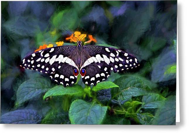 Lime Swallow Tail Greeting Card by James Steele