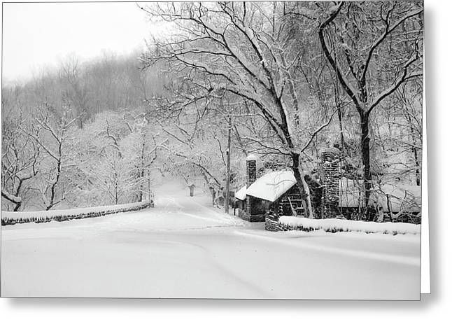 Lincoln And Forbidden Drive In Philadelphia Greeting Card by Bill Cannon