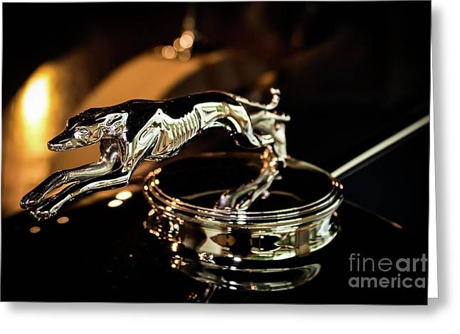 Lincoln Greyhound Hood Ornament Greeting Card
