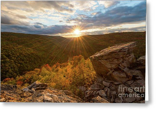 Lindy Point D80003427 Greeting Card