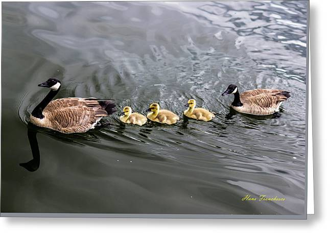 Line Astern Signed Greeting Card