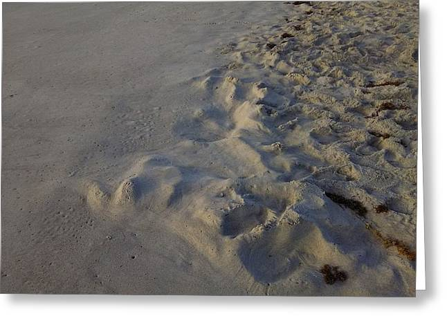 Line In The Sand Greeting Card by Richard Barone