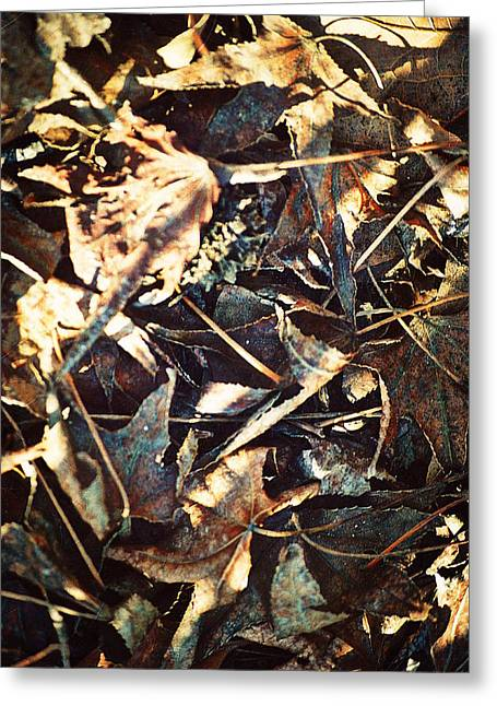 Lingering Foliage Greeting Card by Glenn McCarthy Art and Photography