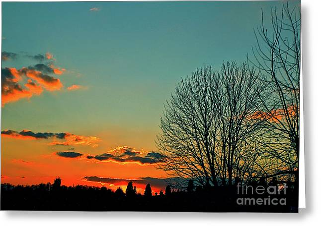 Greeting Card featuring the photograph Linvilla Sunset by Sandy Moulder