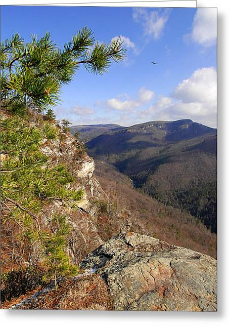 Linville Gorge Greeting Card by Alan Lenk