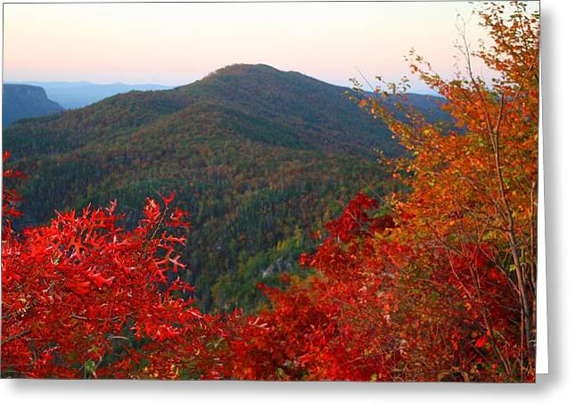 Greeting Card featuring the photograph Linville Gorge by Kathryn Meyer