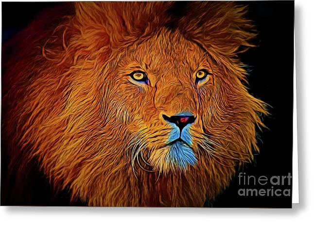 Lion 16218 Greeting Card
