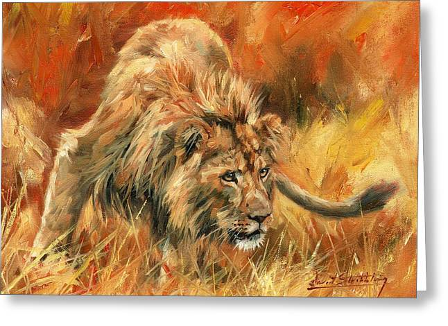 Lion Alert Greeting Card by David Stribbling