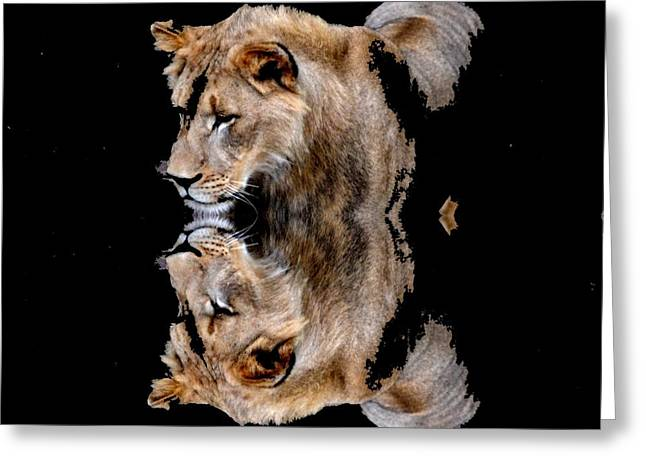 Lion And It's Reflection Greeting Card