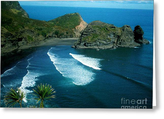 Lion Beach Piha New Zealand Greeting Card