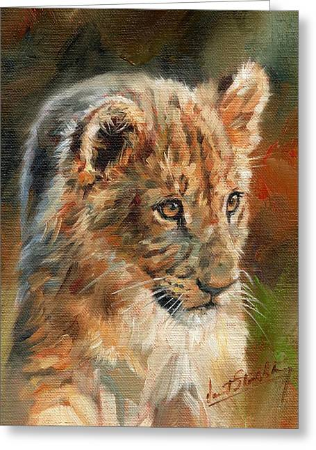 Lion Cub Portrait Greeting Card by David Stribbling