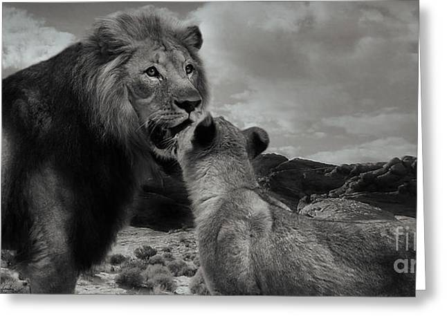 Greeting Card featuring the photograph Lion Family Panorama by Christine Sponchia
