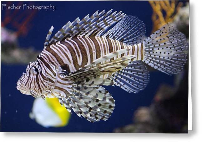 Lion Fish Greeting Card by Kyle Fischer