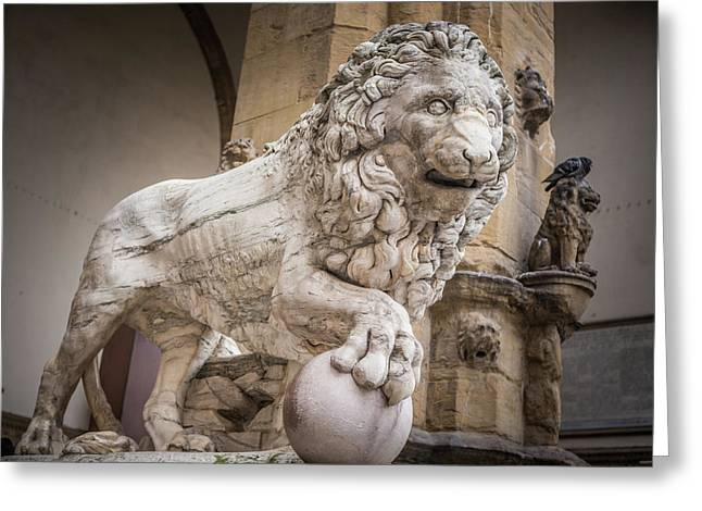 Lion On The Porch Greeting Card