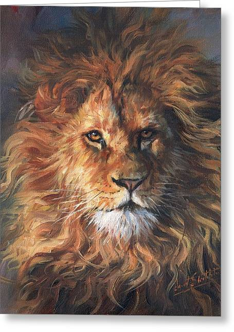 Lion Portrait Greeting Card by David Stribbling