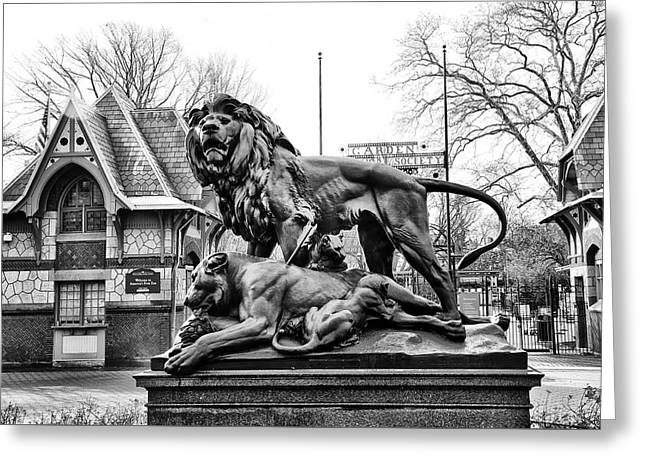Lion Statue At The Philadelphia Zoo Greeting Card by Bill Cannon