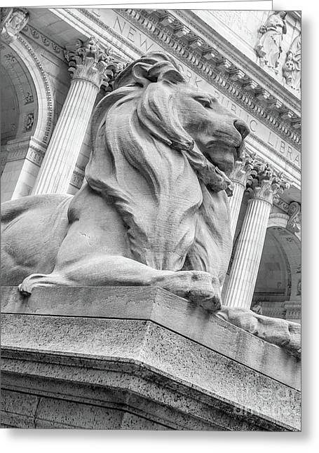 Lion Statue New York Public Library Greeting Card by Edward Fielding