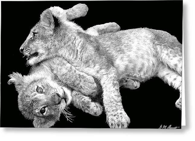 Lion Wrestling Bw Greeting Card by Michael Durst