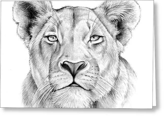 Lioness Greeting Card by Greg Joens