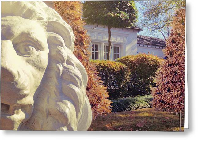 Lions View Of Graceland Greeting Card by JAMART Photography