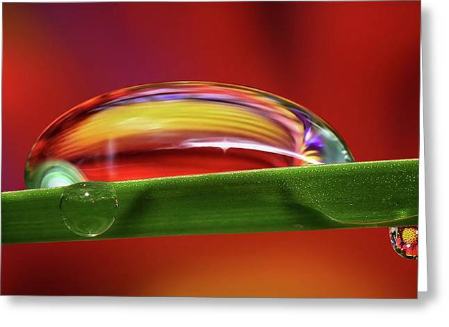Liquid Fire Greeting Card
